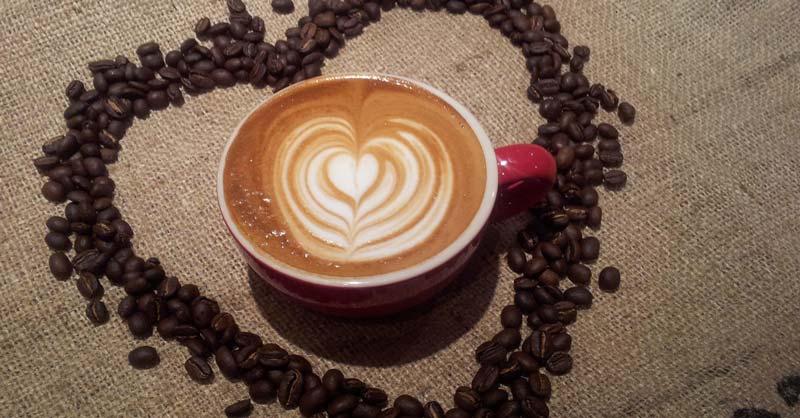 clasificar el café