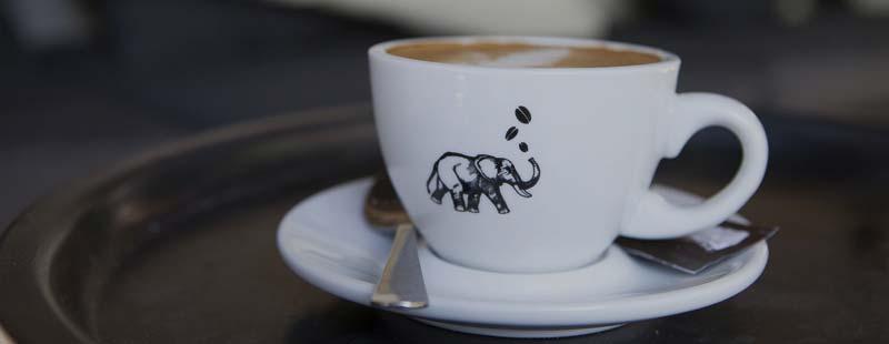 efectos nocivos del café