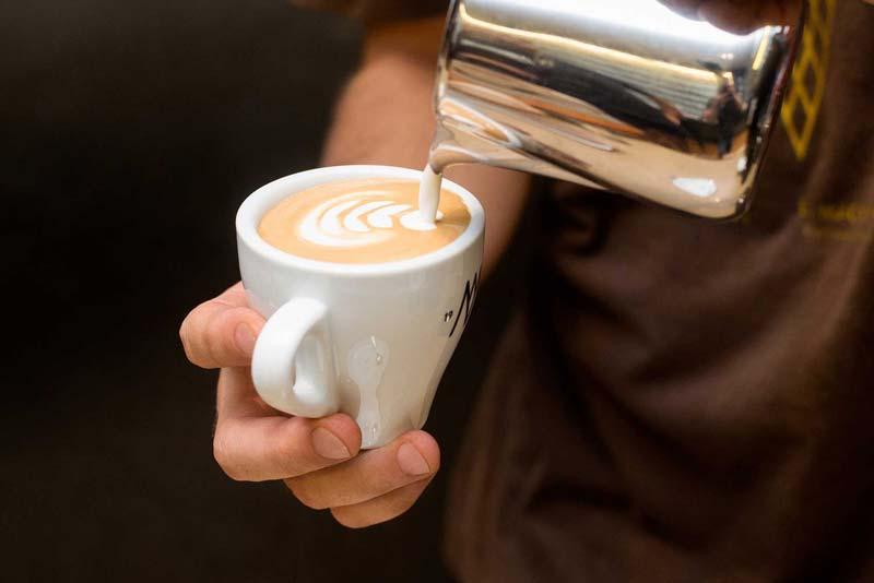 Guía de café gourmet