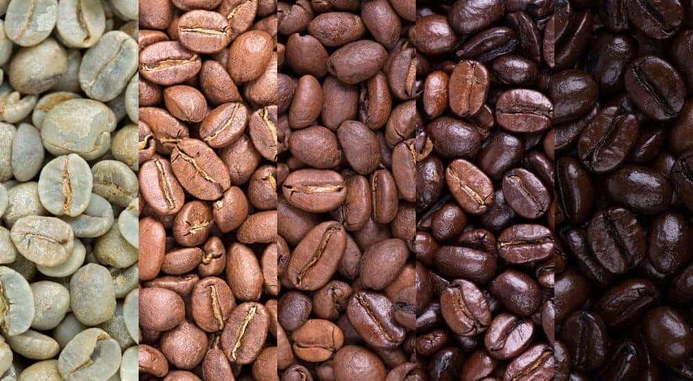El café más caro del mundo: lujo y sabor suave como la seda